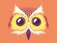 Camera Owl