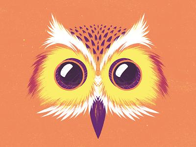 Camera Owl film cinema cine camera grain wacom texture animal búho owl illustration