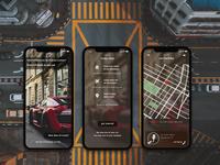 Day 29 - Car sitting app