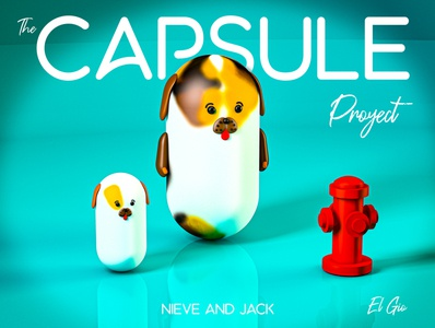 The Capsule Project - Prototype #1