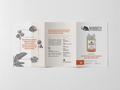 Mammoth MBPI Brochure Spread