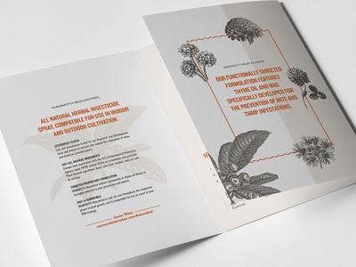 Mammoth MBPI Brochure Detail
