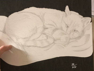 Zeva 🐱 sketchbook artsy creative doodle support local artists follow friends photo of the day like draw artist on dribble arts comic sketch graphic illustration comic art artwork artist art