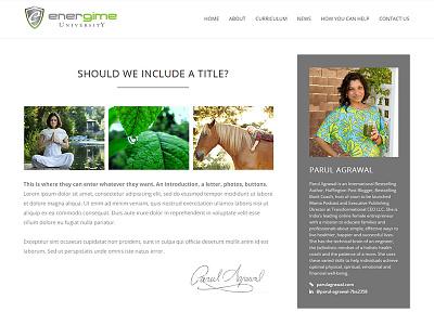 minimal bio section blogging blog bio renewable energy sterile minimal biographies bio