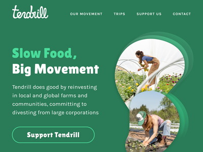 Tendrill Desktop desktop design website design logo digital design