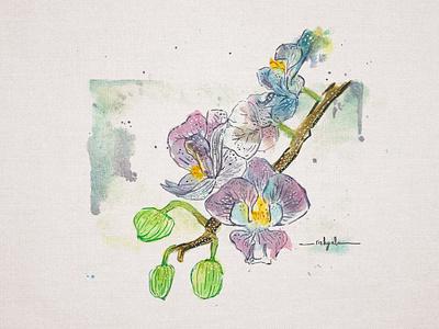 Violet Orchid flower botanical illustration orchid violet hand drawing hand painting watercolor design surealism illustration greating