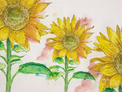 Detail of a Sunflower patterndesign painting yellow sunflower mock up flower hand drawing interior design design botanical illustration watercolor surealism illustration greating