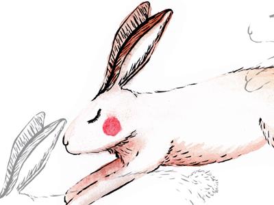 Fathimakathrada hare01