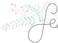 February lettering & illustration detail