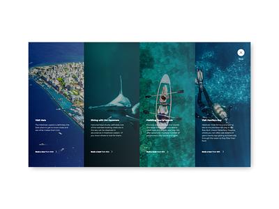 Travel Website Features List ui design seaside vacation rentals vacation options modal window modal popup features page features traveling travel app travel agency travel ui
