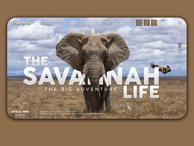 The Savannah Life web design brown website design website webdesign web ux uiux ui photoshop