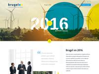 Template Brugel Annual Report