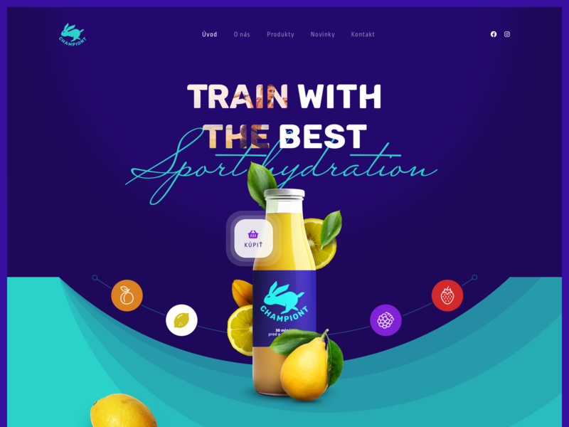 Championt webdesign ui website