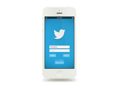 Twitter Login Concept