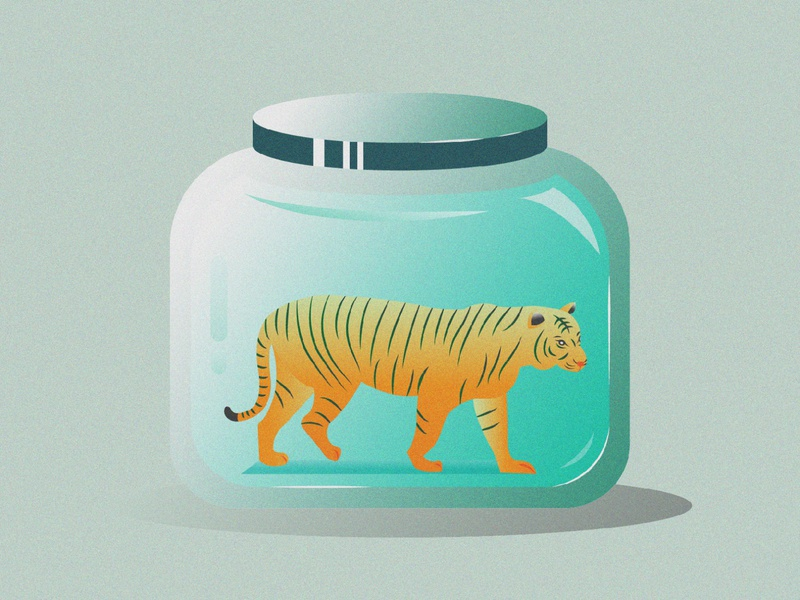 Tiger Illustration grain texture jar tiger animal character color vector drawing illustration design