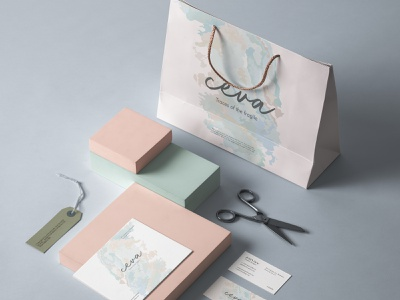 Ceva | Brand Identity flat vector brand and identity designer illustration shapes graphic design color brand design identity typography logo clean adobe minimal design branding