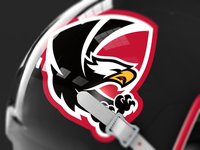 HACL Eagles Helmet