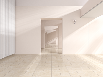 Doorway cctv camera redshift iran light art architect door house branding webdesign architecture c4d modeling concept art direction 3d