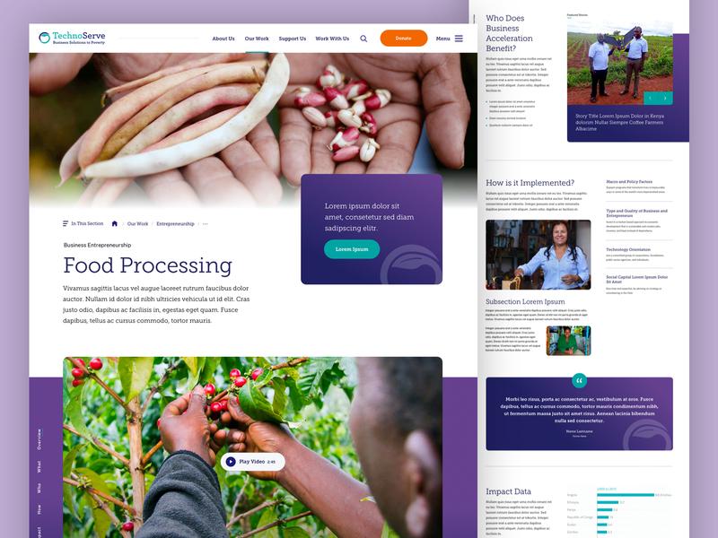 TechnoServe — Food Processing landing poverty food entrepreneurship business nonprofit non-profit web design website ux ui