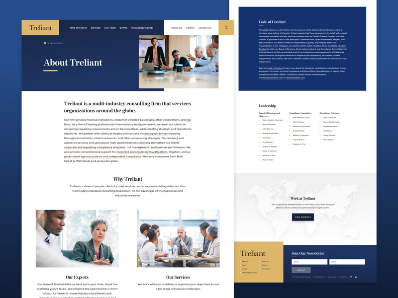 Treliant - About map about website web interior firm consulting landing page landing ux ui