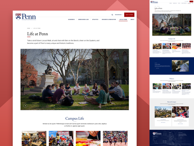 Life at UPenn card featured school university responsive design website web landing web design ux ui