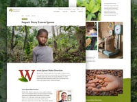 World Cocoa Foundation Impact Story Concept