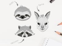 Wildlife animals - sloth, llama, raccoon vector illustration