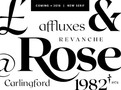 New serif: work in progress connary fagen vintage 2018 wip fonts typeface calligraphy serif typography font