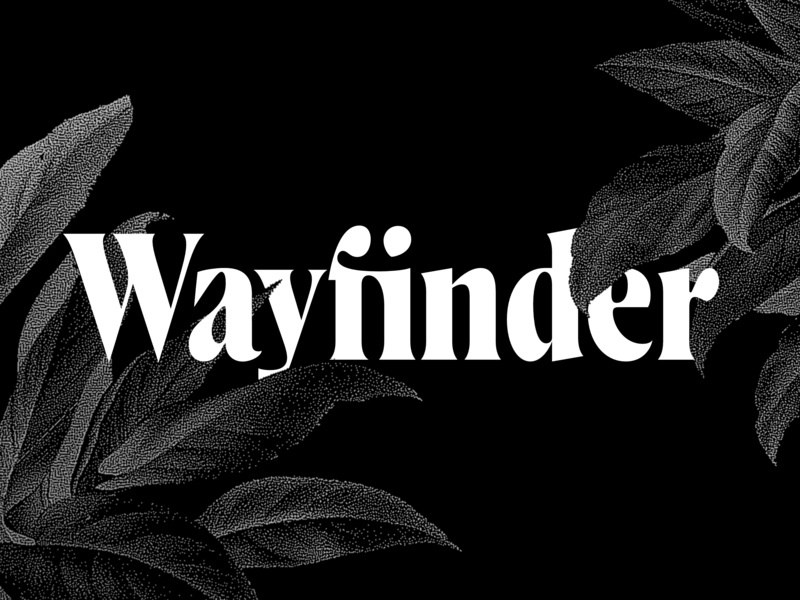 Wayfinder CF serif font family branding headline type wayfinder font design lettering smooth warm vintage capitals display tall design strong bold serif connary fagen typeface typography font