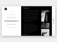 Mistake. Minimal web Gallery design - Daily #2
