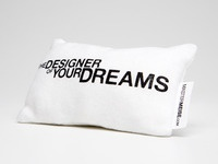 Self Promotional Mini Pillow (Back)