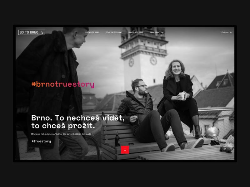 #truestory (TIC Brno) website web ux design ux user experience ui user interface