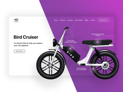 Bird Bike Web Re-Design
