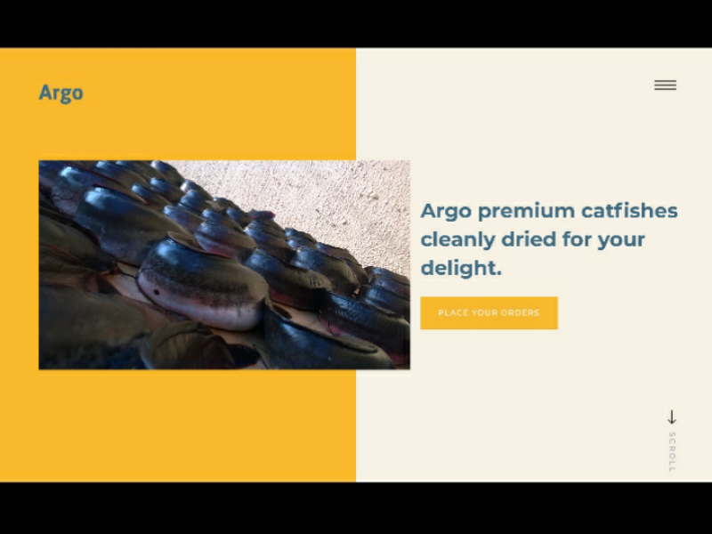 Argo Dried Fishes ui ux design web interface