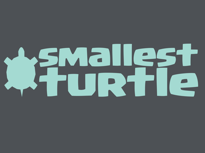 Smallest Turtle Logo
