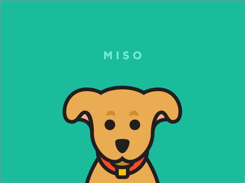 Miso miso vector illustration dog