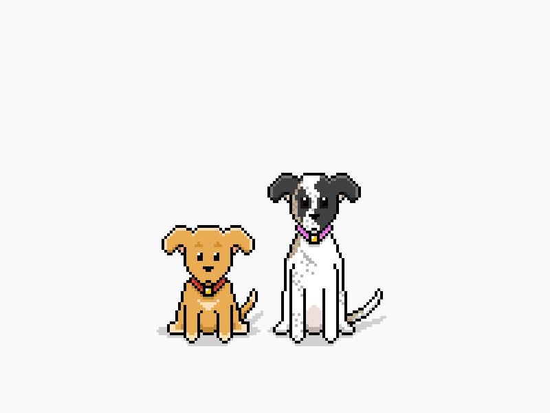 Miso & Momo illustration pixel art dogs
