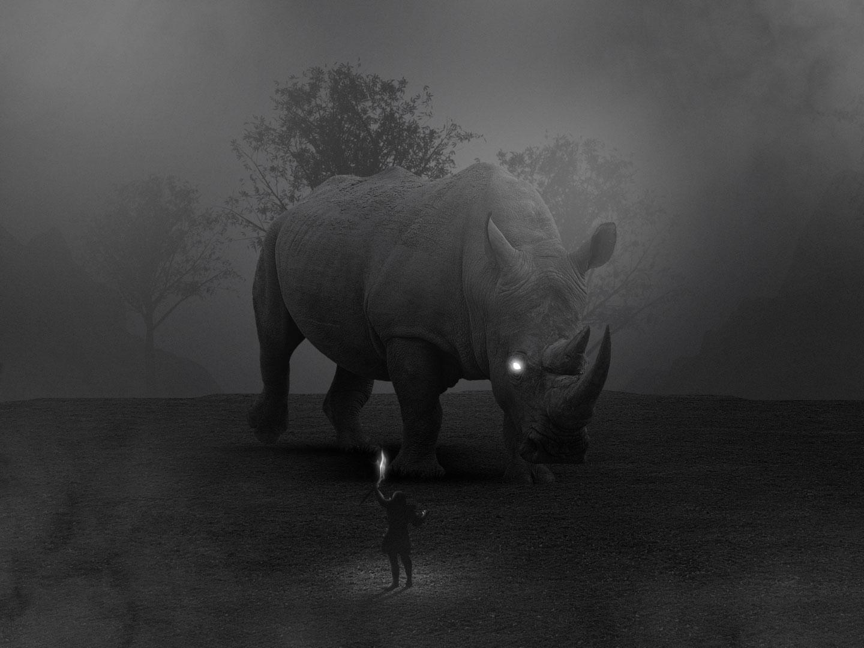 Facing the Fear concept art depth black and white fog rhino image manipulation adobe photoshop