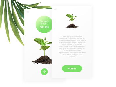 Seedly App UI Design