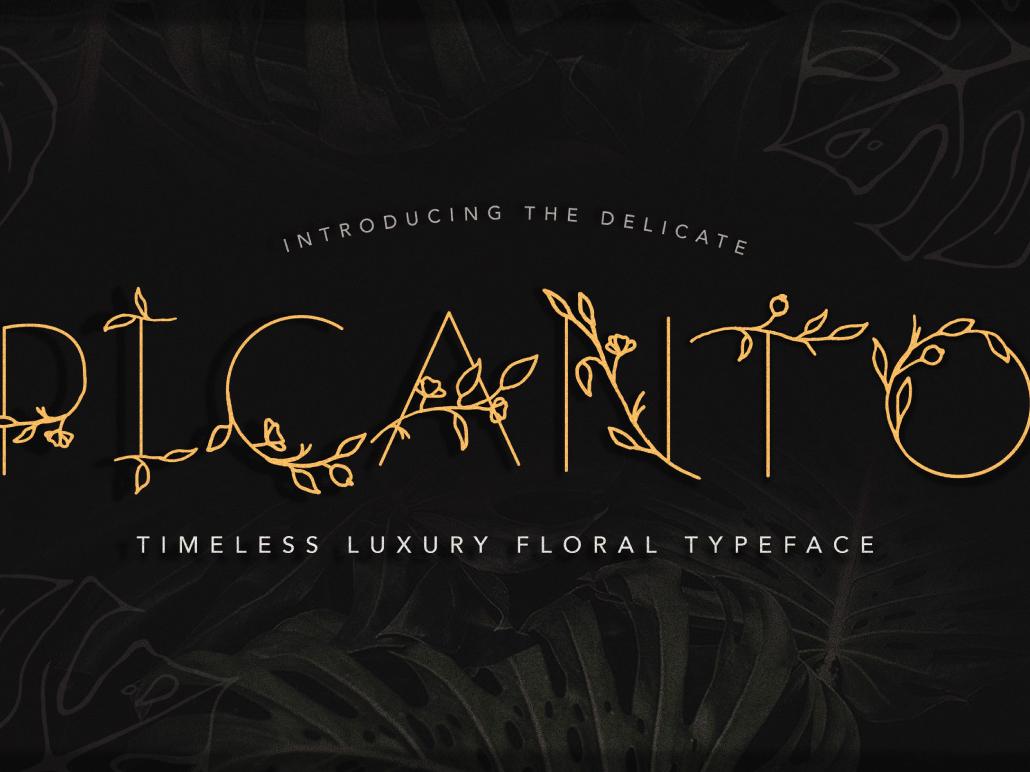 PICANTO - FLORAL FONT blogging flourishes floral font invitation design wedding font wedding packaging packagingdesign packagedesign branding font design logo design modern font handwritten font