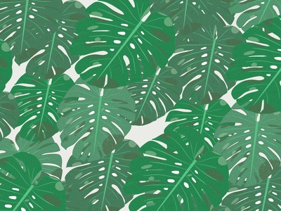 Tropical pattern tropical green pattern illustration monstera hawaii tropic patterns floral
