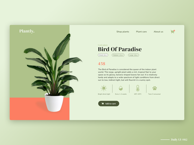 Plant shop product page open product shopping green plants webshop ecommerce product page branding figma ui dailyui design daily ui