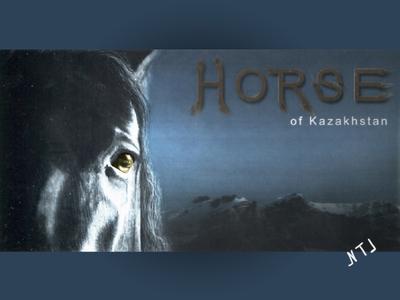 Advertising Banner HORSE. banner design creation horse advertising photo graphicdesign banner