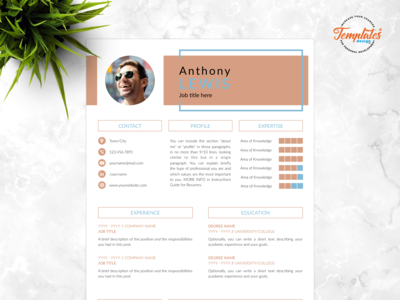 "Resume Template For Word And Pages ""Anthony Lewis"""