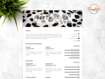 """Resume Template For Word And Pages """"Betty Bauer"""""""