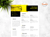 """Resume Template For Word And Pages """"Evelyn Collins"""""""