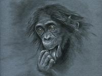 Monkey s3 10