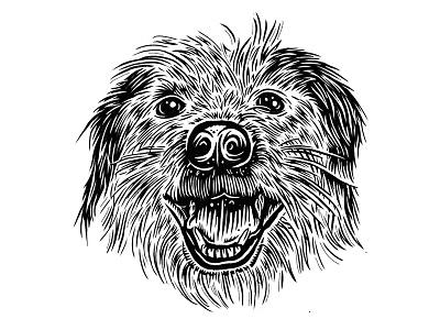 Gus furry black and white illustration hand drawn dog portrait