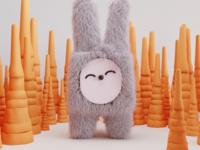 Lapin / bunny