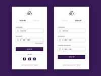 Sign In / Sign Up Screen